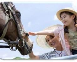 女の子とお母さんと馬